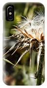 Seedy Neighborhood IPhone Case