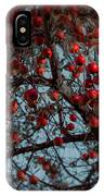 Seeing Red IPhone Case