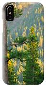 Seeing The Forest Through The Tree IPhone Case