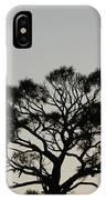 Senset Trees IPhone Case