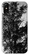 September Tree ... IPhone Case