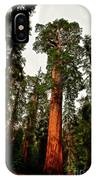 Sequoia In Kings Canyon IPhone Case