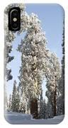 Sequoia National Park 4 IPhone Case