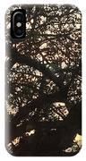 Setting Sun In Tree IPhone Case