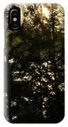 Setting Sun Through A Cypress Tree IPhone Case