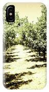Shady Grove Palm Springs IPhone Case