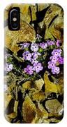 Shale Garden.  IPhone Case