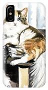She Has Got The Look - Cat Portrait IPhone Case