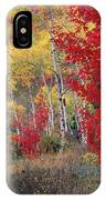 Sheep Canyon In Autumn IPhone Case