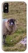 Sheep IPhone Case