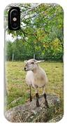 Happy Sheep Posing For Her Photo IPhone Case