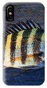 Sheepshead Fish IPhone Case