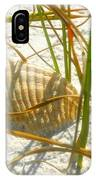 Shell And Beach IPhone Case