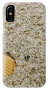 Shells In The Sand IPhone Case