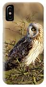 Short-eared Owl In Tree IPhone Case