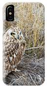 Short Eared Owl IPhone Case by Michael Chatt