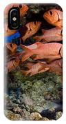 Shoulderbar Soldierfish IPhone Case