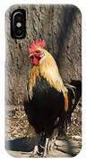 Showy Rooster Posed IPhone Case