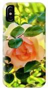 Shy Rose IPhone Case