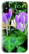 Signs Of Spring I IPhone Case