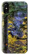 Silver Falls State Park Oregon 2 IPhone Case