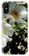 Silver Terrace Virginia City Nevada Flowers IPhone Case