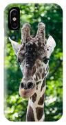 Single Giraffe IPhone Case