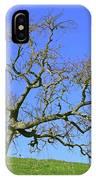 Single Oak Tree IPhone Case