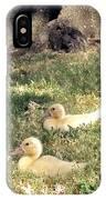 Sitting Ducks IPhone Case