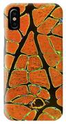 Skeletal Muscle Fibres, Light Micrograph IPhone Case