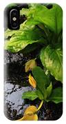 Skunk Cabbage Beauty IPhone Case