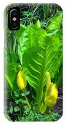 Skunk Cabbage In Bloom IPhone Case