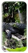Sleeping Alligator IPhone Case