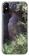 Sleeping In The Jungle - Stone Face In Forest IPhone Case