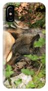 Sleeping Wolf IPhone Case