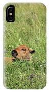 Sleepy Calf IPhone Case