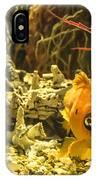 Small Fish In An Aquarium IPhone Case