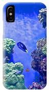Smaller Fish In Monterey Aquarium-california  IPhone Case