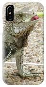 Snacking Iguana On A Concrete Walk Way IPhone Case