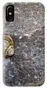 Snail At Ballybeg Priory County Cork Ireland IPhone Case