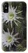 Snake Cactus Flowers IPhone Case