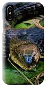 Snakehead IPhone Case