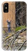 Snoozing IPhone Case
