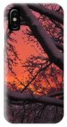 Snow Covered Branches At Sunset IPhone Case