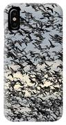 Snow Geese Spring Migration IPhone Case