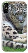 Snow Leopard, Doue-la-fontaine Zoo, Loire, France IPhone Case