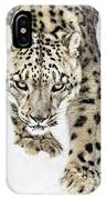 Snow Leopard On The Prowl X IPhone Case