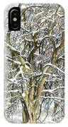 Snow On A Hedge Tree IPhone Case