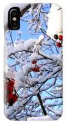 Snow On The Mountain Ash IPhone Case