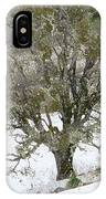 Snow Tree  IPhone Case